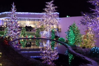 Garden of Lights at the Mormon Temple-Namrata Shah