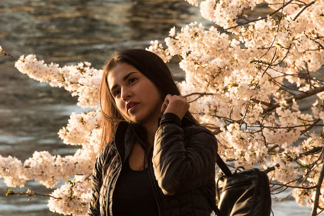 Early Morning Cherry Blossoms Photo Shoot-Merle Litowitz