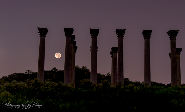 Moonset and Sunrise Over National Capitol Columns-Joy Phillipi