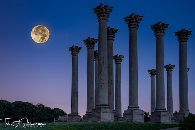 Moonset and Sunrise Over National Capitol Columns-Toby Silverman