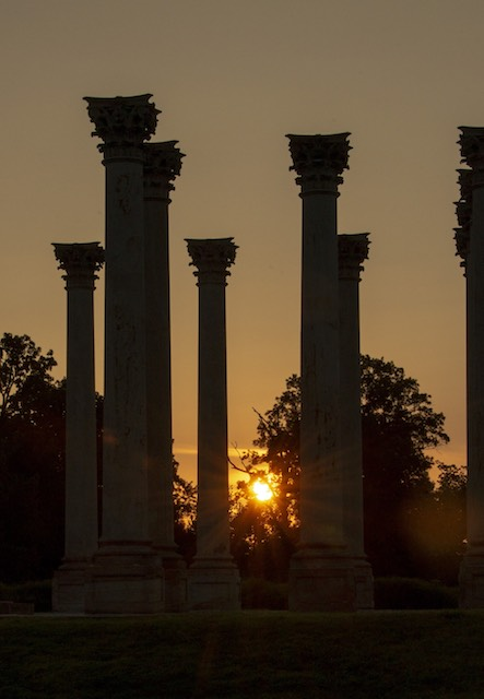 Moonset and Sunrise Over National Capitol Columns-Tory Noland