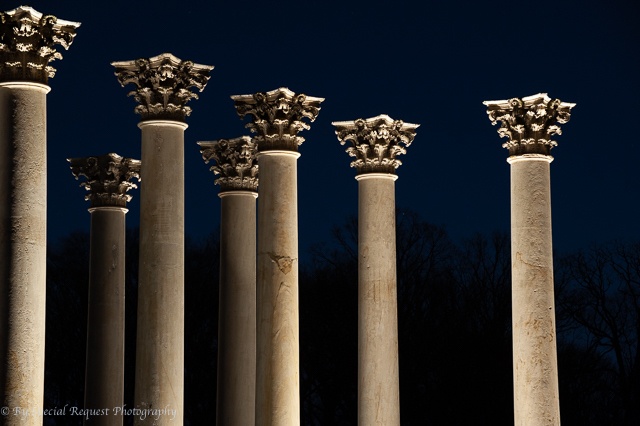 Moonrise over the Capitol Columns at the National Arboretum-Candi Campbell