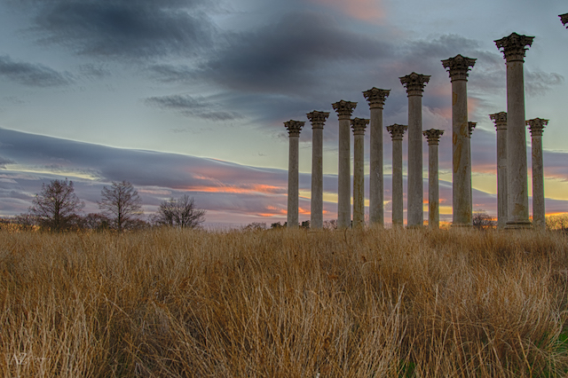 Moonrise over the Capitol Columns at the National Arboretum-Beth Haubach