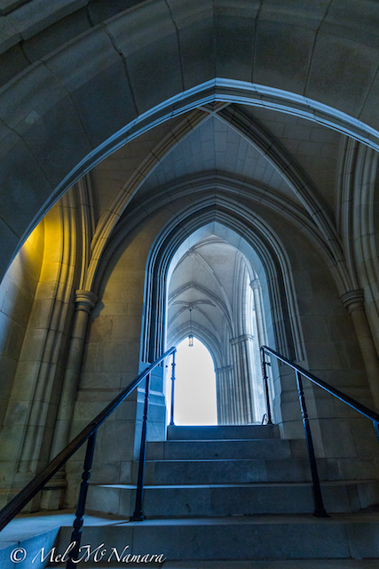 Early Morning Light at Washington National Cathedral-Mel McNamara