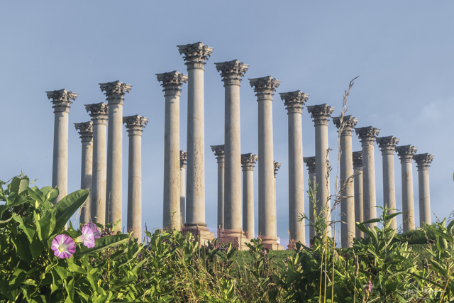 Moonset and Sunrise Over Capitol Columns At National Arboretum-Joy Philippi