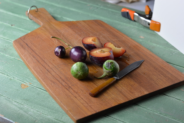 Getting Started in Food Photography-Nora Whalen