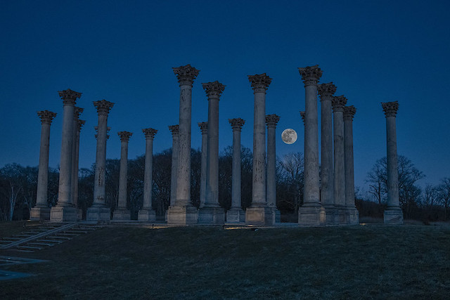 Sunset and Moonrise over the Capitol Columns at the National Arboretum-Jennifer Gonzalez