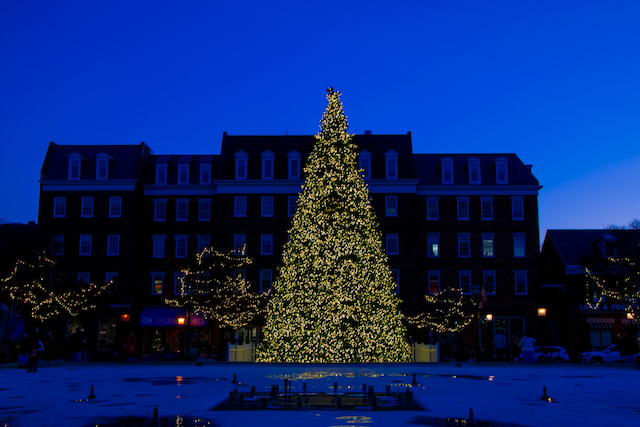 Holiday Lights in Old Town Alexandria-Meghan Brennan