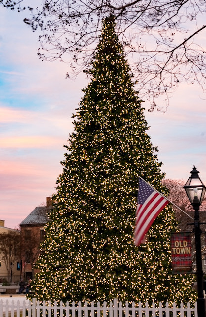 Holiday Lights in Old Town Alexandria-Gladys Sewell