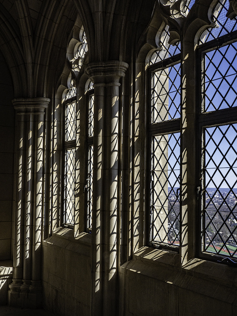 National Cathedral - An Insider's View-Ginger Werz-Petricka