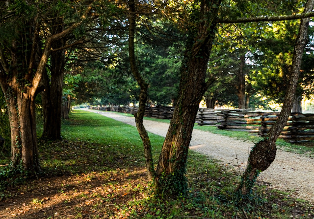 Landscape Photography at Piscataway Park-Gladys Sewell