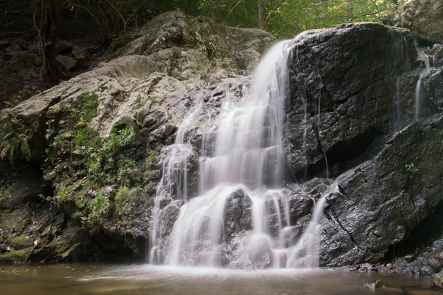 Patapsco Waterfalls-Suet Man