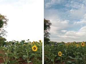Without (left) and with (right) Split ND filter